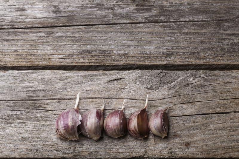 Garlic on the table. Garlic on the vintage wooden table stock photo