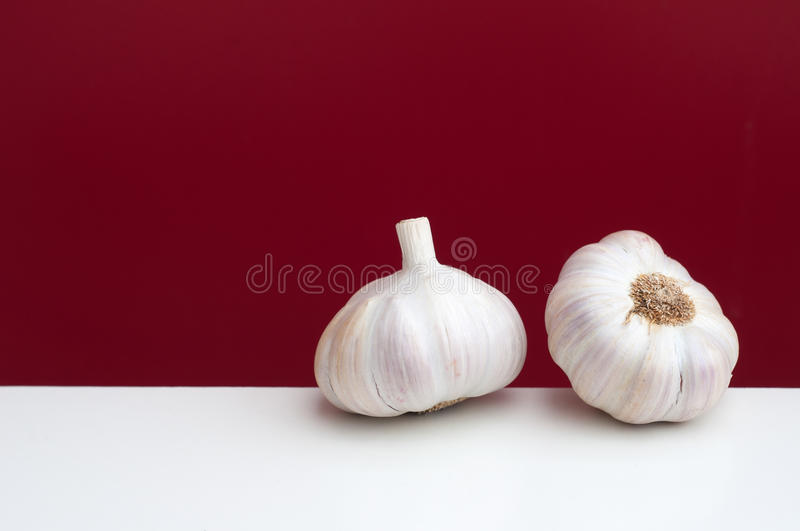 Garlic on a white and red background. Two bulbs of garlic on a white and red background stock photos