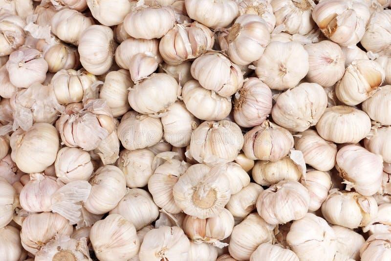 Download Garlics στην αγορά της Ταϊλάνδης Στοκ Εικόνες - εικόνα από καρπός, κάπρων: 62710630