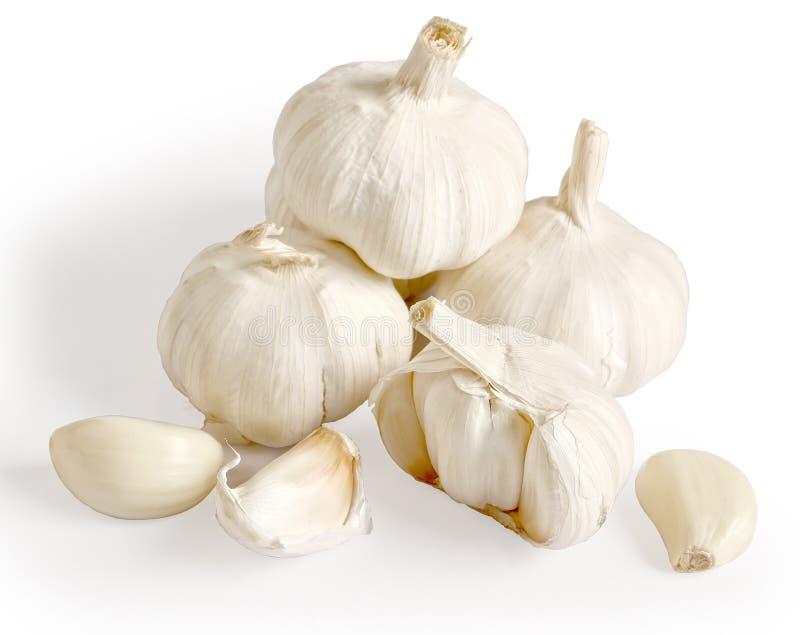 garlics στοκ εικόνες με δικαίωμα ελεύθερης χρήσης