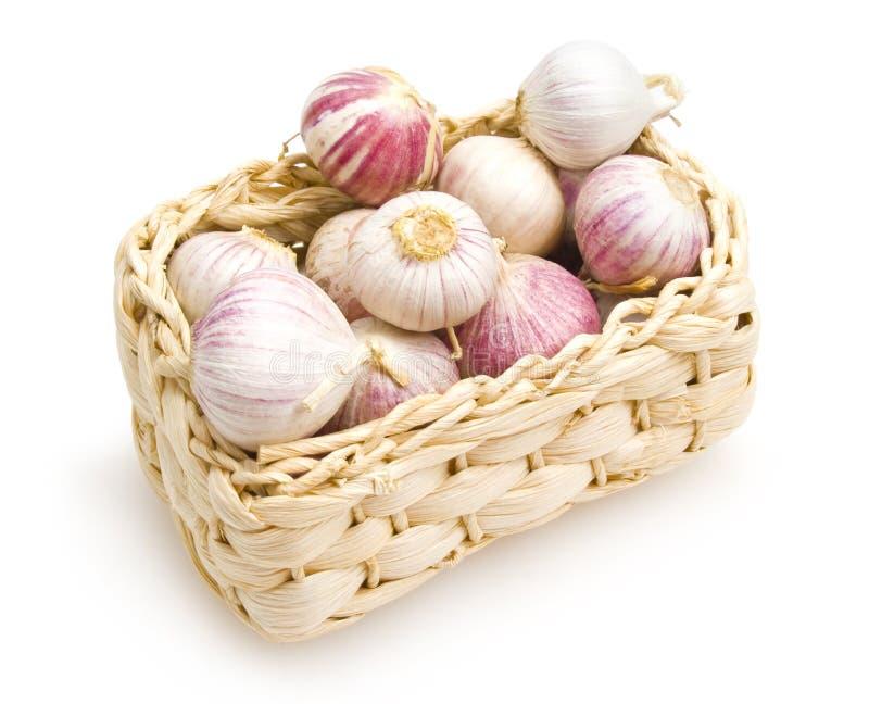 Download Garlics Stock Photos - Image: 19953853