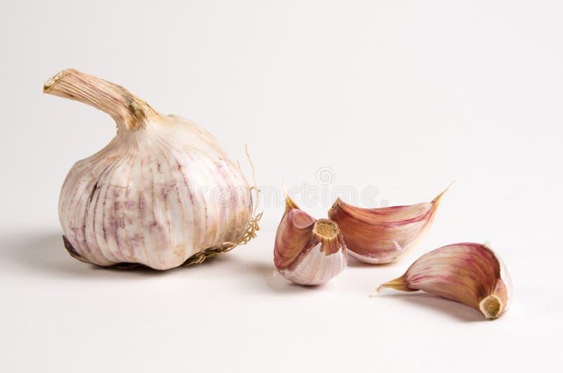 garlics 图库摄影