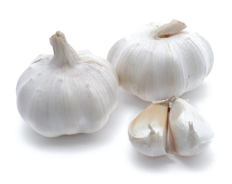 Garlics Dos Fotografía de archivo