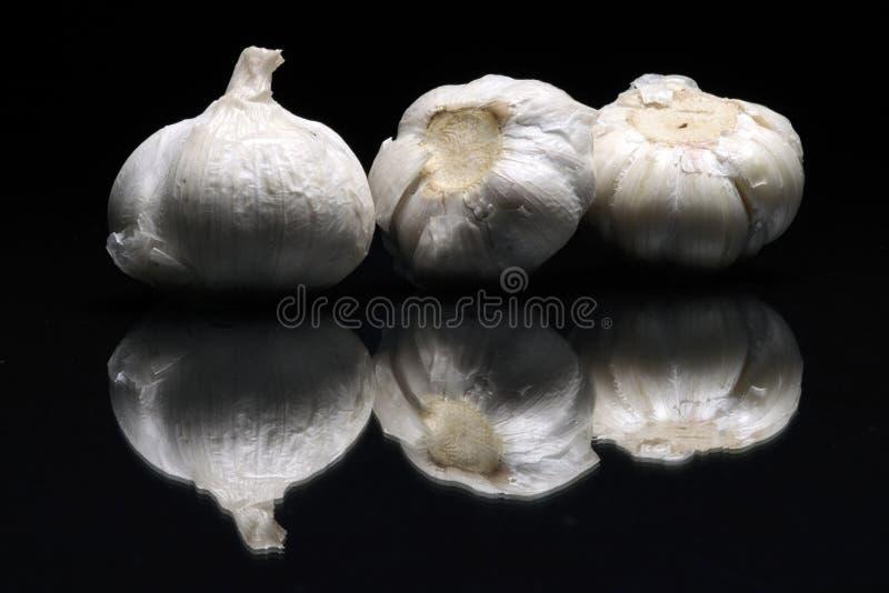 Garlics tre fotografia stock