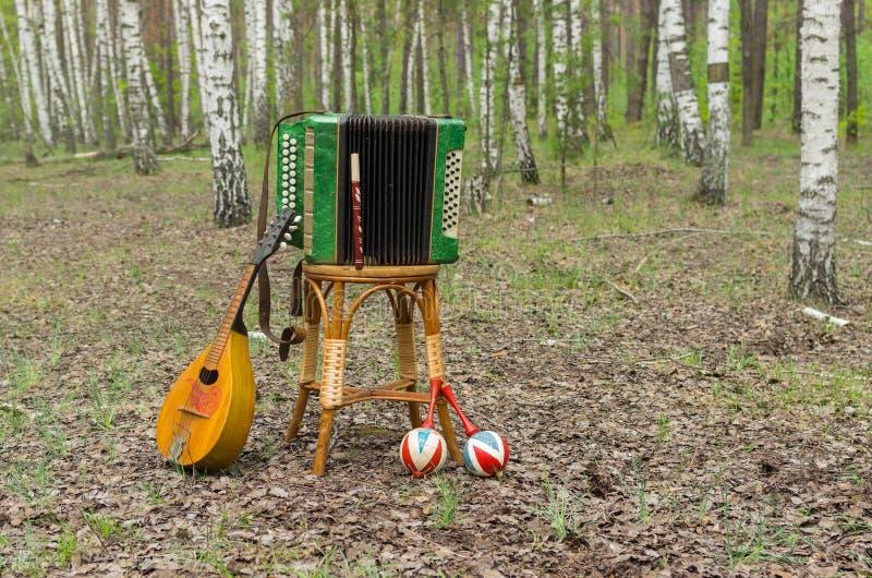 Garmonika, mandoline, maracas en Fife in een bos stock foto