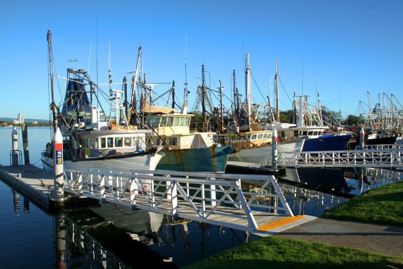 Garnalen en vissersvloot bij dok stock foto