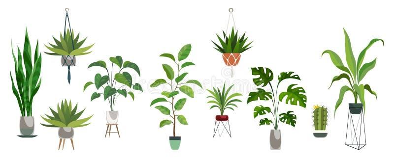 Garnek rośliny set Rośliny plastikowy dekoracyjny zbiornik i obwieszenie projektuje salowego kosz dla puszkować drzewną wektorową royalty ilustracja