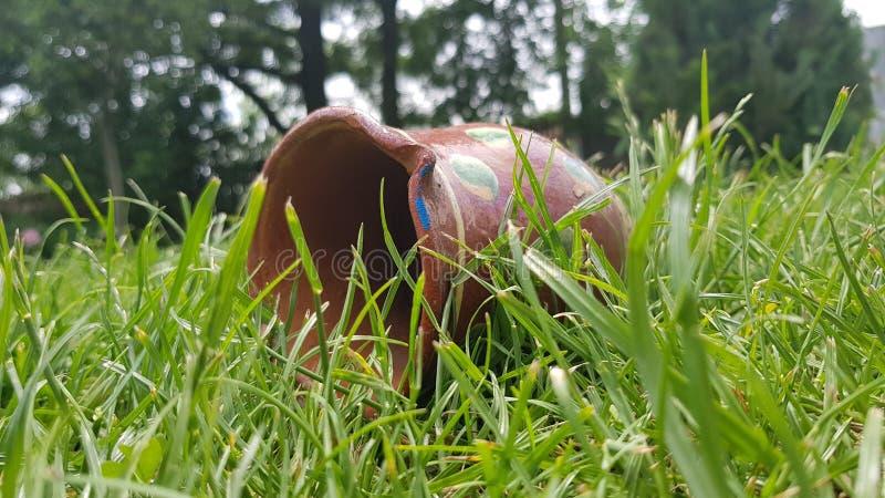 Garnek w trawie obrazy royalty free