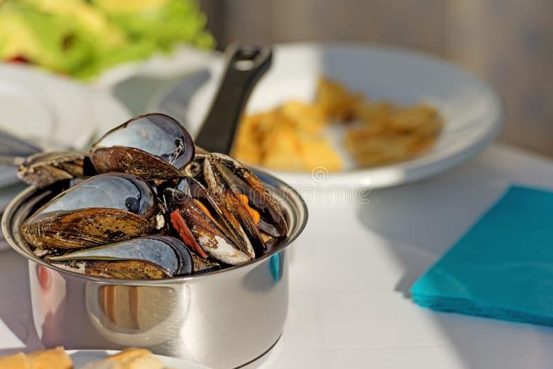 Garnek wyśmienici mussels garnirujący z świeżymi ziele zdjęcie royalty free