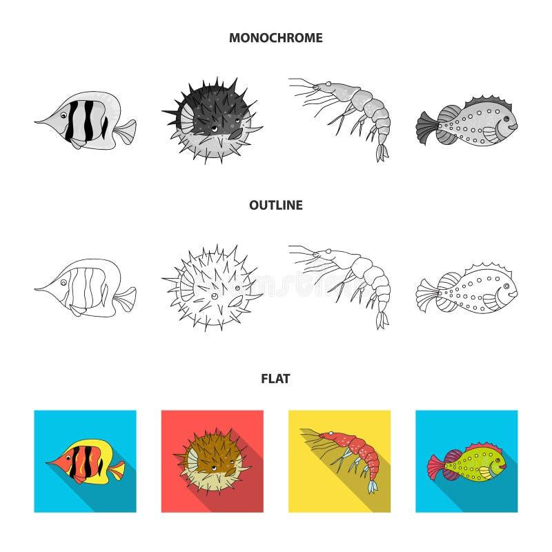 Garnela, ryba, jeż i inni gatunki, Dennych zwierząt ustawiać inkasowe ikony w mieszkaniu, kontur, monochromu stylowy wektorowy sy ilustracja wektor