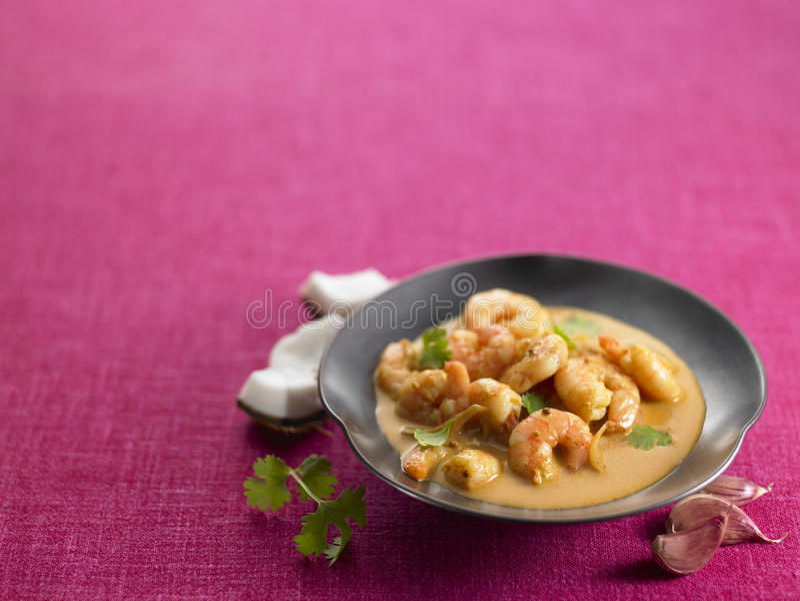 Garnele-Curry lizenzfreies stockfoto