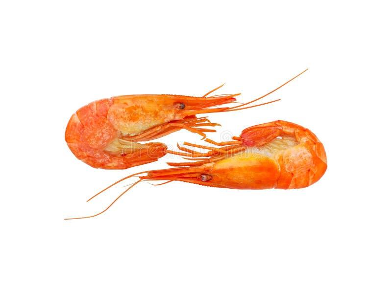 Garnele gotować się marznąć na bielu Owoce morza gotowała krewetki Krewetka zdjęcia royalty free
