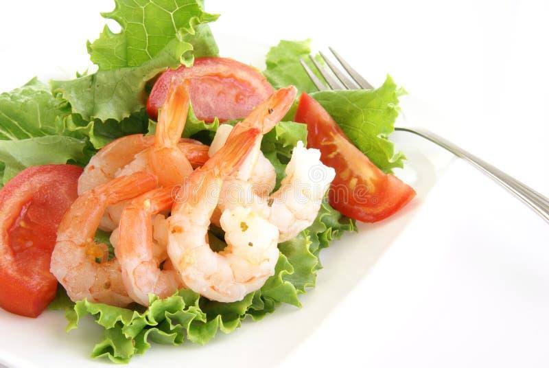 Garnele-Salat lizenzfreie stockbilder