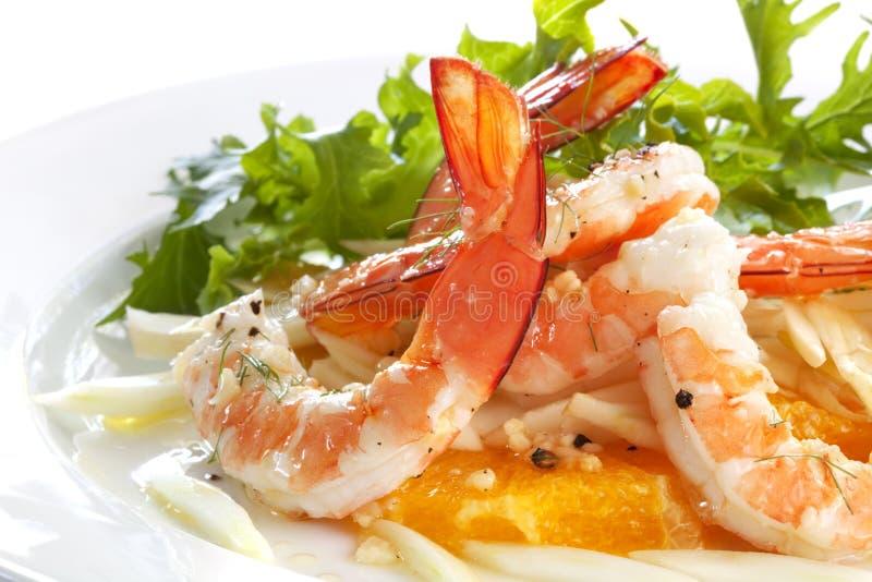 Garnele-und Fenchel-Salat stockbilder