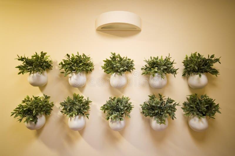 garneringen blommar väggen royaltyfri foto
