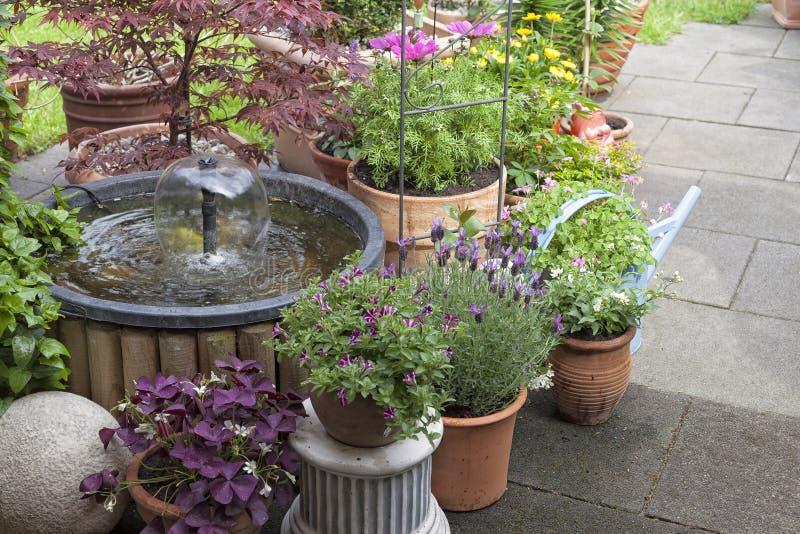 garneringträdgård royaltyfri fotografi