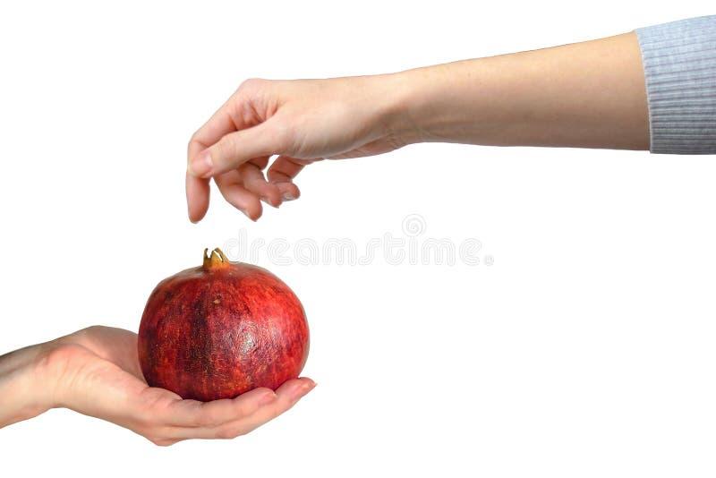 Garnet ręka obrazy stock