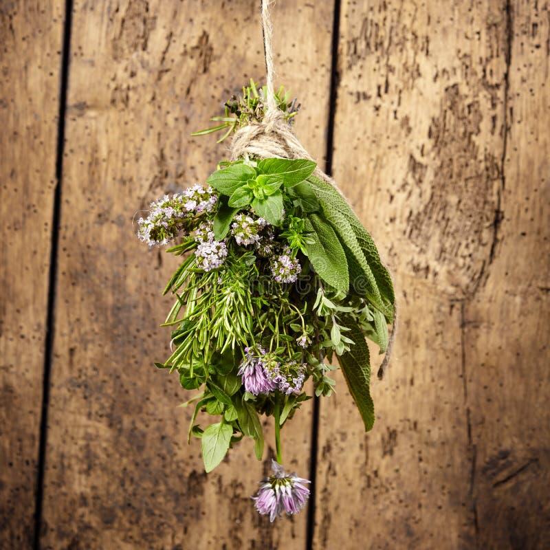 Garni do ramalhete de ervas frescas sortidos imagens de stock royalty free