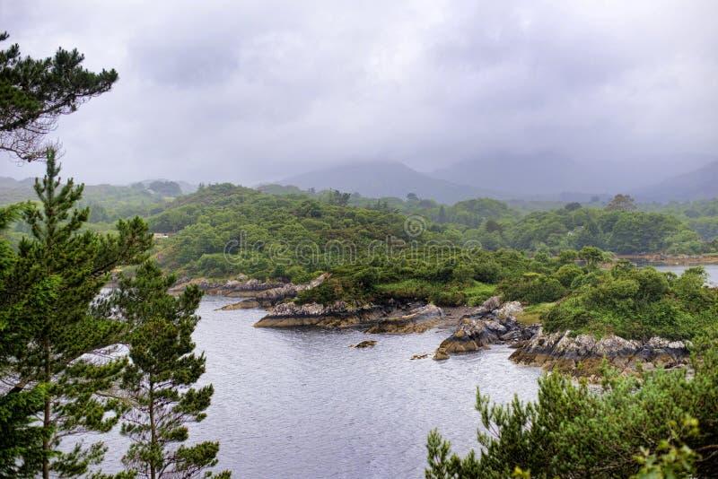 Garnirunek wyspa Irlandia obrazy stock
