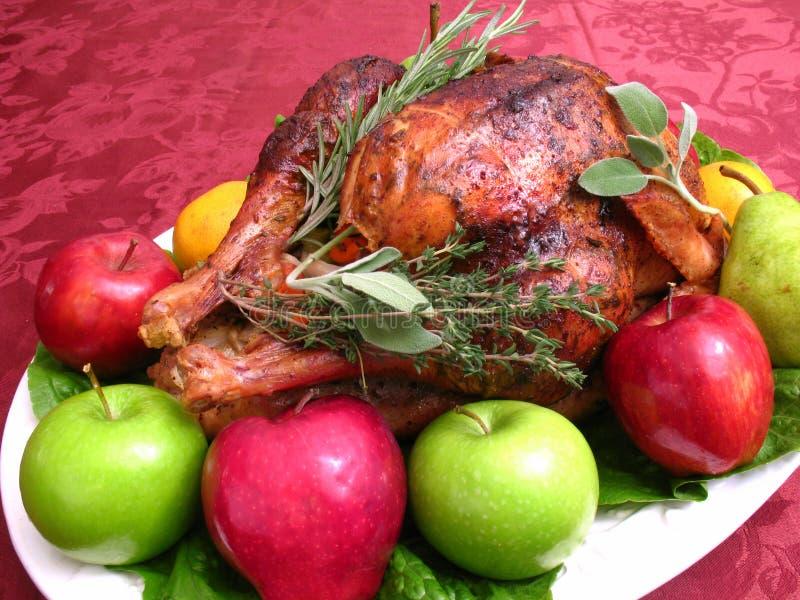 Garnished Thanksgiving Turkey. Photo of thanksgiving turkey garnished with fruit and herbs stock photo