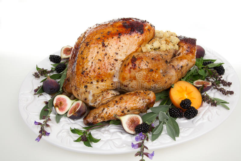 Garnished turkey on serving tray. Glazed roasted turkey on serving tray over white background. Garnished with figs, blackberry, persimmon, sage, and basil stock image