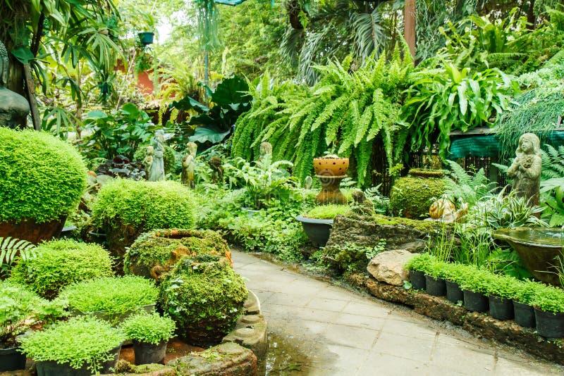 Garnki w ogródzie obrazy royalty free