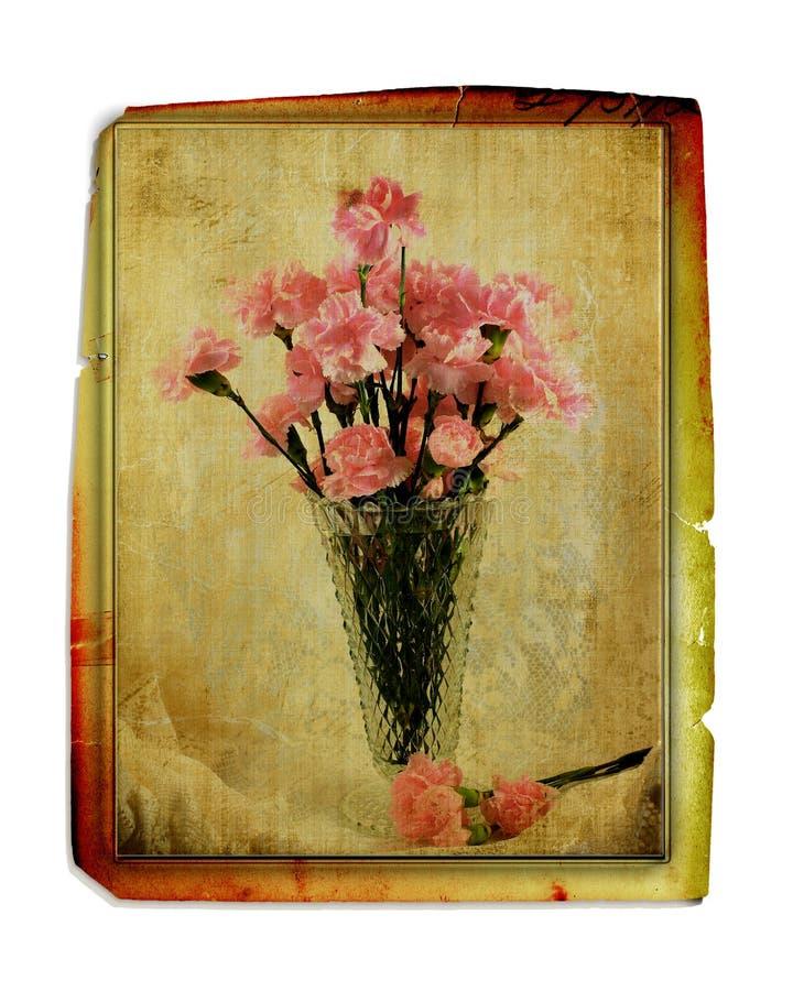 Garofani dell'annata in vaso fotografia stock libera da diritti