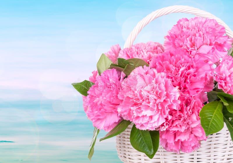 Garofani rosa nel canestro fotografia stock libera da diritti