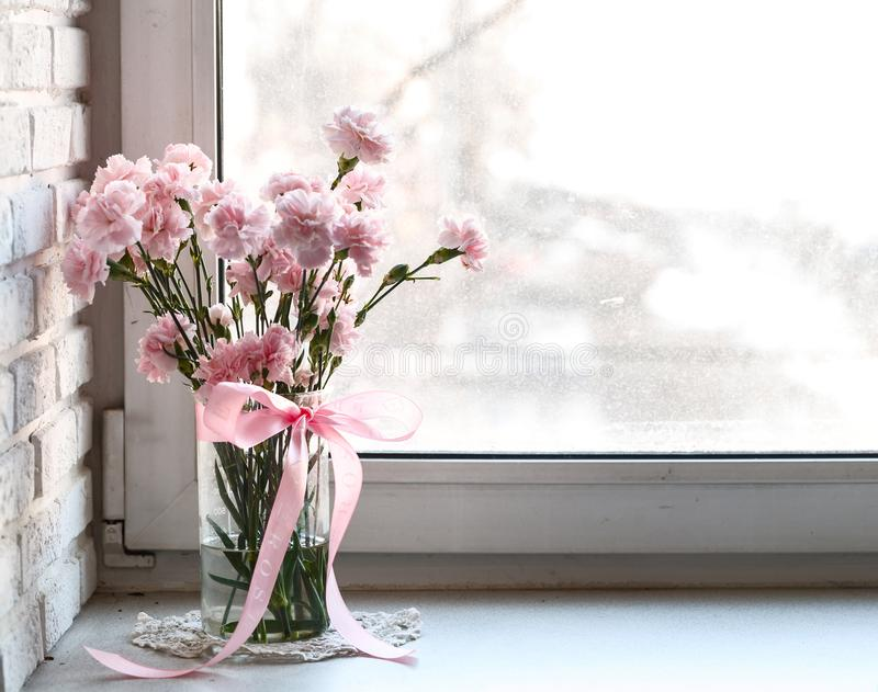 Garofani rosa sul davanzale bianco immagine stock libera da diritti