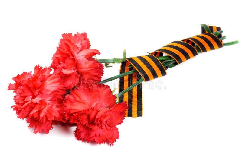 Garofani rossi con il nastro del ` s di St George isolato su fondo bianco 9 maggio giorno della vittoria nella grande guerra patr immagini stock libere da diritti