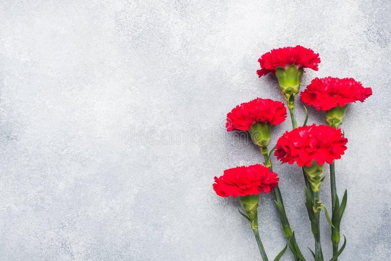 Garofani rossi su fondo concreto con lo spazio della copia Carta di festa della Mamma, San Valentino immagine stock