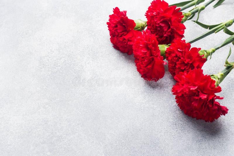 Garofani rossi su fondo concreto con lo spazio della copia Carta di festa della Mamma, San Valentino fotografia stock libera da diritti