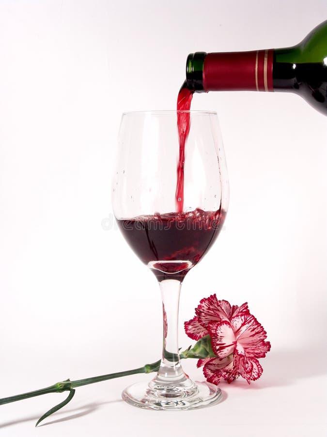 Garofano del vino rosso fotografie stock libere da diritti