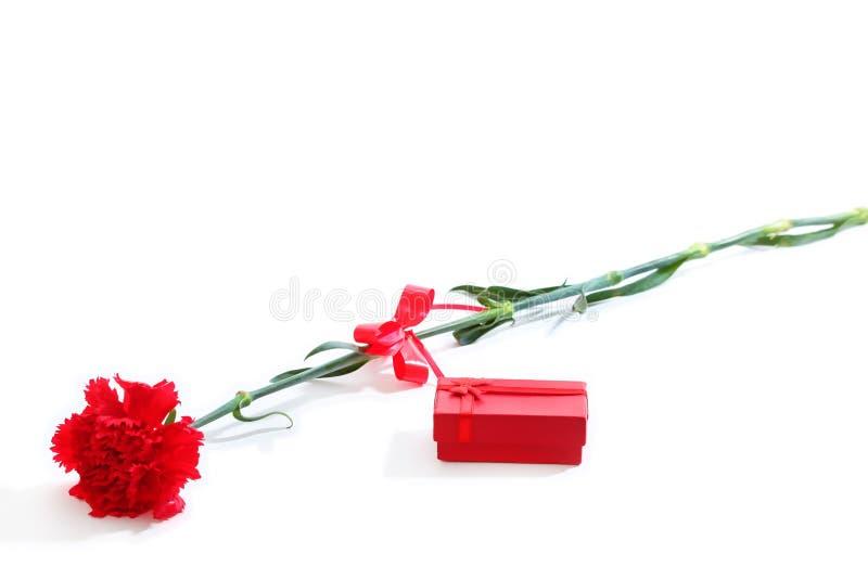 Garofano rosso con il contenitore di regalo fotografia stock