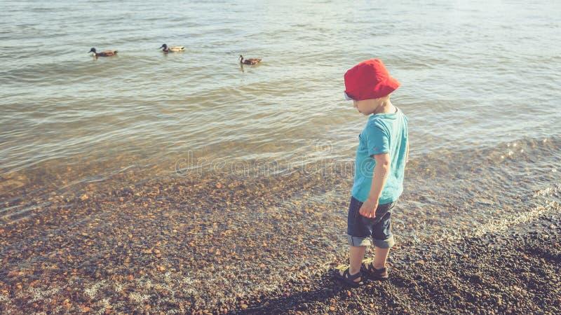 Garotinho na praia do rio à tarde fotos de stock royalty free