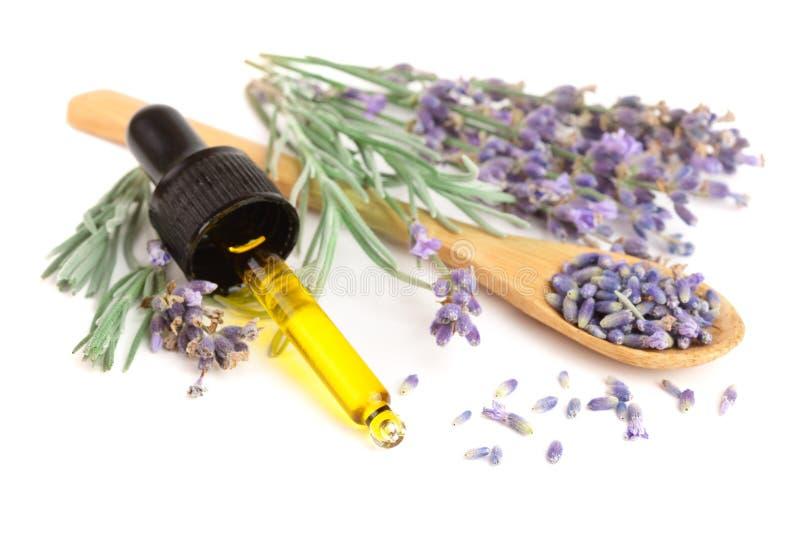Garrafa com as flores do óleo e da alfazema do aroma isoladas no fundo branco imagens de stock