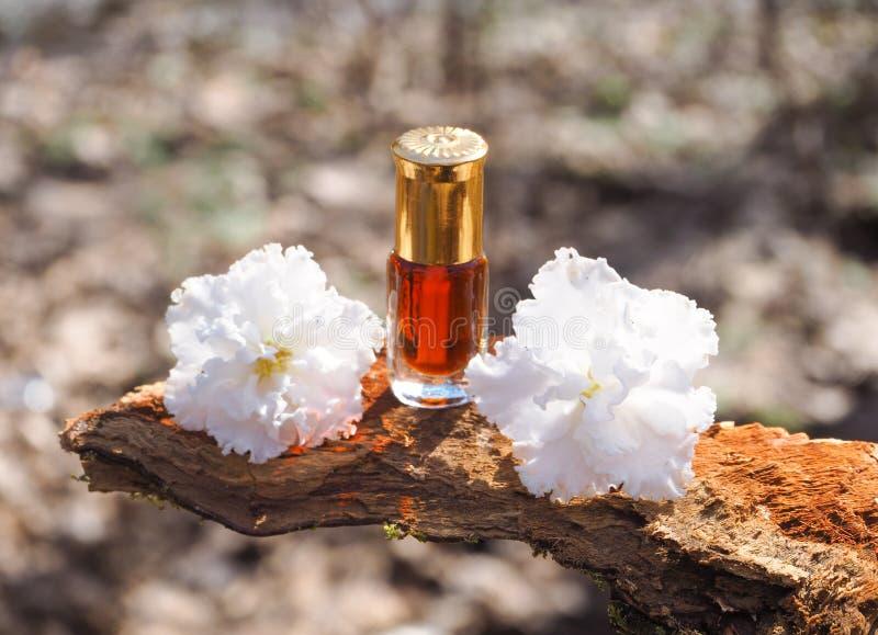 Garrafa da árvore do agarwood do óleo contra a casca Fragrâncias árabes do perfume do attar do oud ou do óleo do agarwood na mini imagens de stock