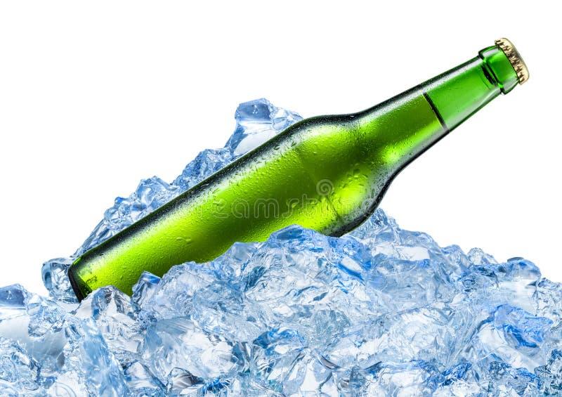 Garrafa da cerveja com gotas em cubos de gelo Isolado no branco foto de stock royalty free