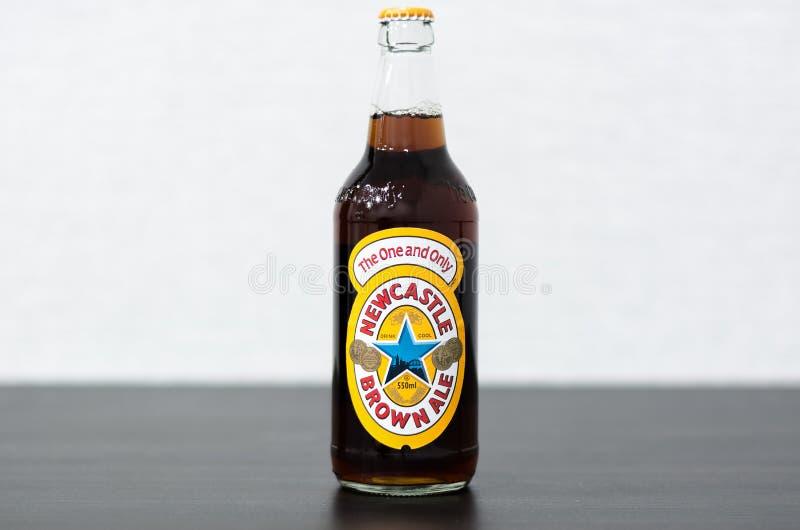 Garrafa da cerveja inglesa de Newcastle Brown fotografia de stock