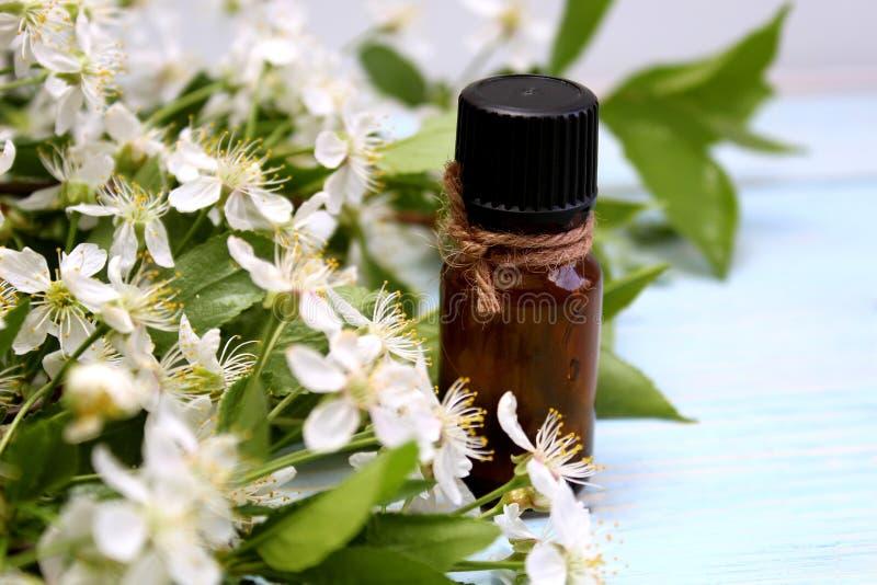 Garrafa de óleo da aromaterapia com o perfume de flores da cereja da mola fotografia de stock royalty free