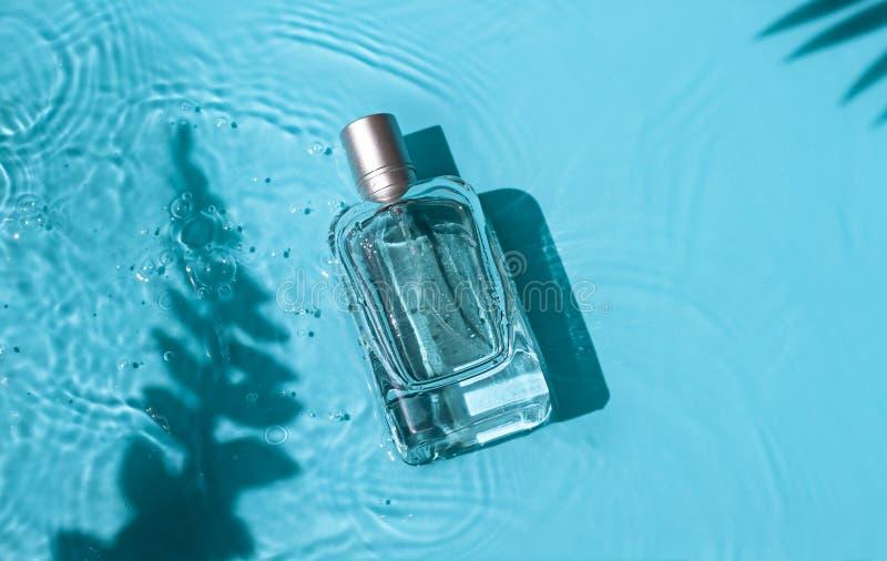 Garrafa de perfume cosmética de vidro transparente na água azul sob sombras das folhas tropicais fotos de stock
