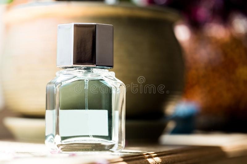 Garrafa de perfume no sol - imagem foto de stock royalty free