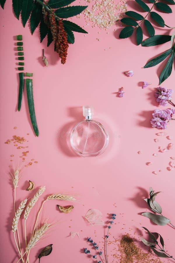 Garrafa de perfume transparente nas flores no fundo cor-de-rosa Fundo da mola com parfume do aroma Configura??o lisa imagem de stock