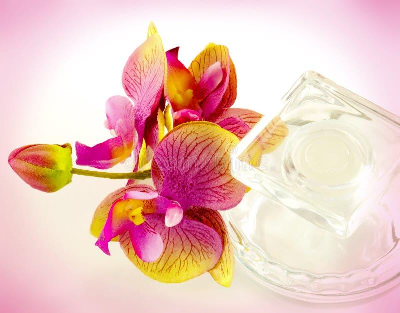 Garrafa de vidro e orquídeas foto de stock