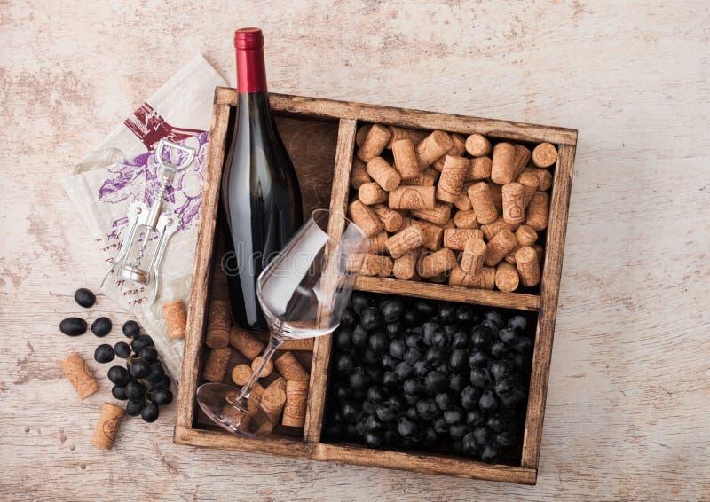 Garrafa de vinho tinto e de vidro vazio com uvas escuras, com rolhas e opener no interior de uma caixa de madeira de vintage sobr imagem de stock