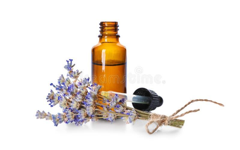 Garrafa do óleo essencial com alfazema no fundo branco imagem de stock royalty free