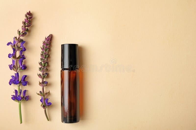 Garrafa do óleo essencial e de flores prudentes no fundo da cor, configuração lisa Espa?o para imagem de stock