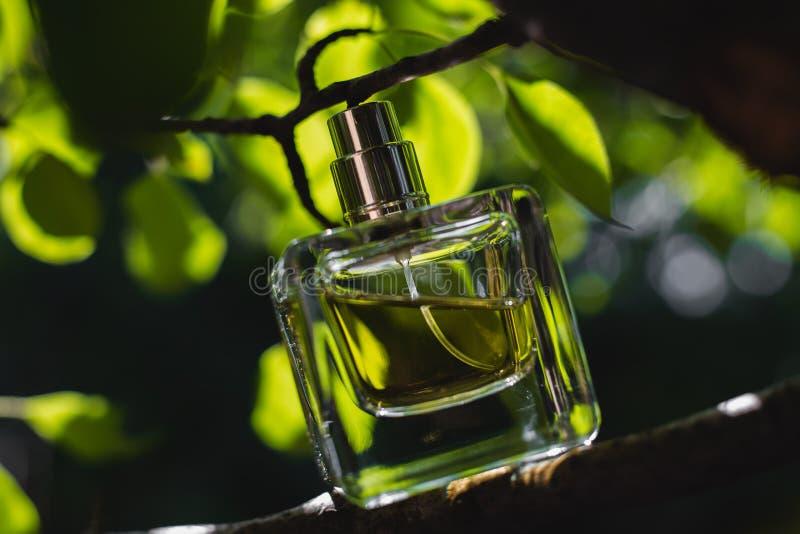 Garrafa do perfume fotografia de stock