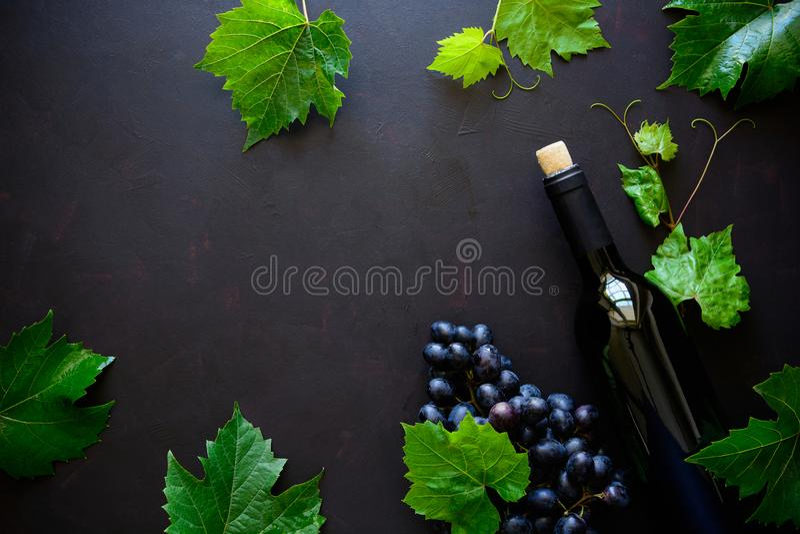 Garrafa do vinho tinto, das uvas e das folhas encontrando-se no fundo de madeira escuro fotografia de stock