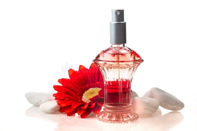 Garrafa e flores de perfume isoladas no branco imagem de stock
